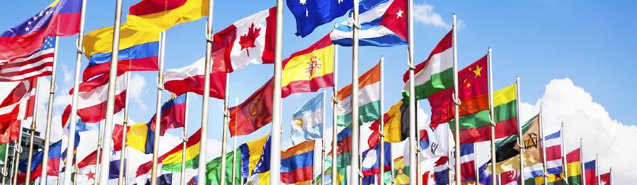 EL/16/02/16 Międzynarodowe stosunki biznesowe